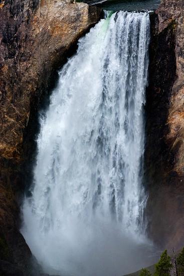 Lower Yellowstone Falls photo