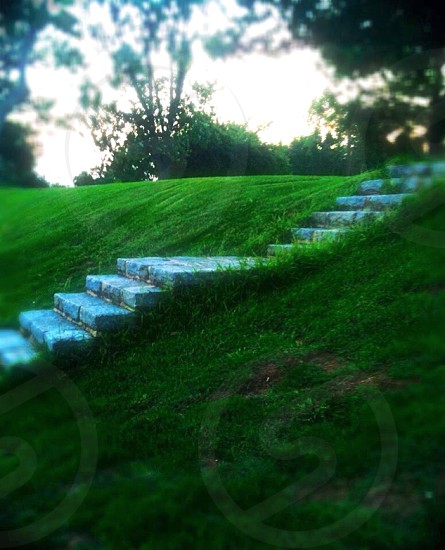 white concrete stairs in between green grass field photo
