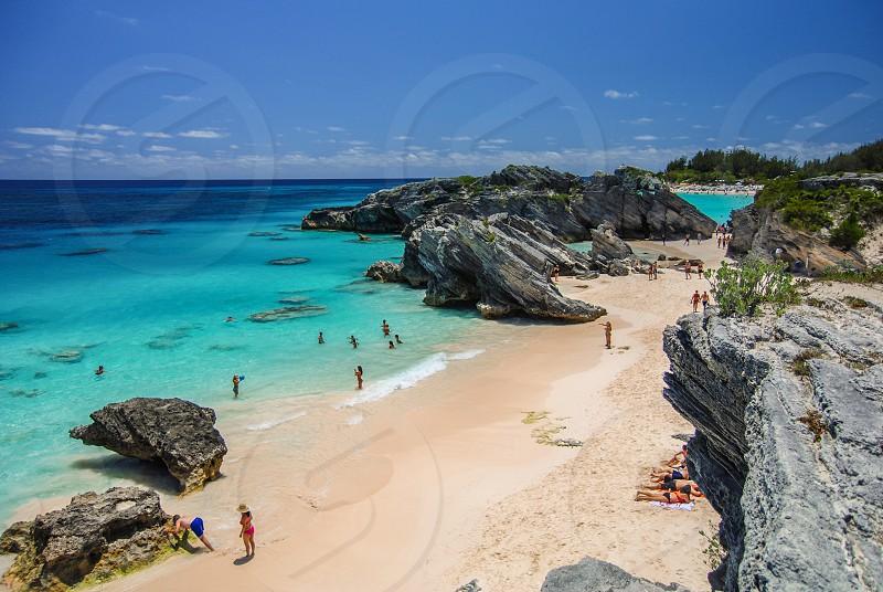 Bermuda travel beach sun summer pinkbeach horseshoe bay island turquoise ocean  photo