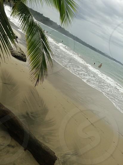 Punta Cocles Limon Costa Rica photo