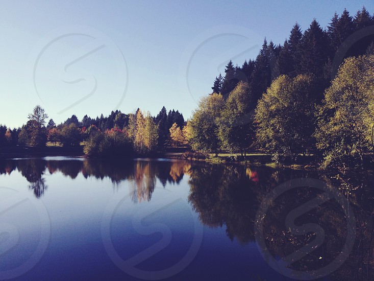 Portland lake in fall.  photo