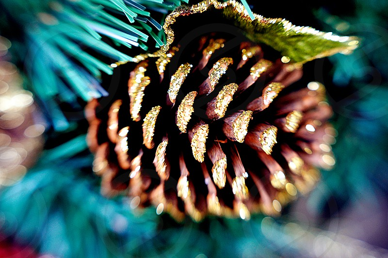 Glitter on a Christmas holiday pinecone photo