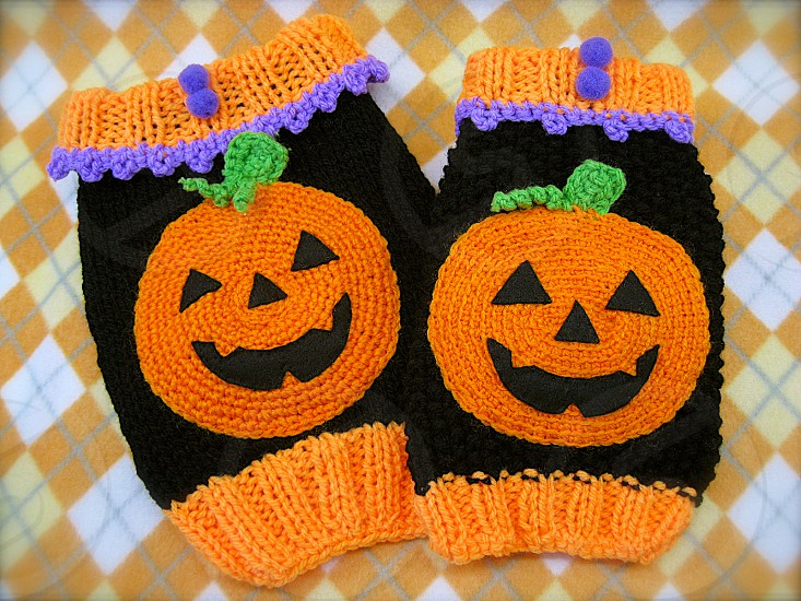 2014/10/21_Snapwire_Submission for PHOTO CHALLENGE: 'Halloween' (3) Halloween Handmade Knit Sweater for my dog Orange and Black Pet handmade wear Knit Halloween photo