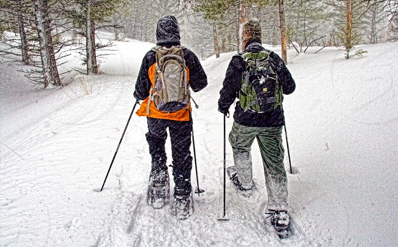 Yellowstone Park snowshoers photo