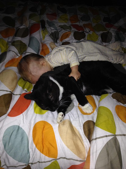 Comfy cat and baby photo