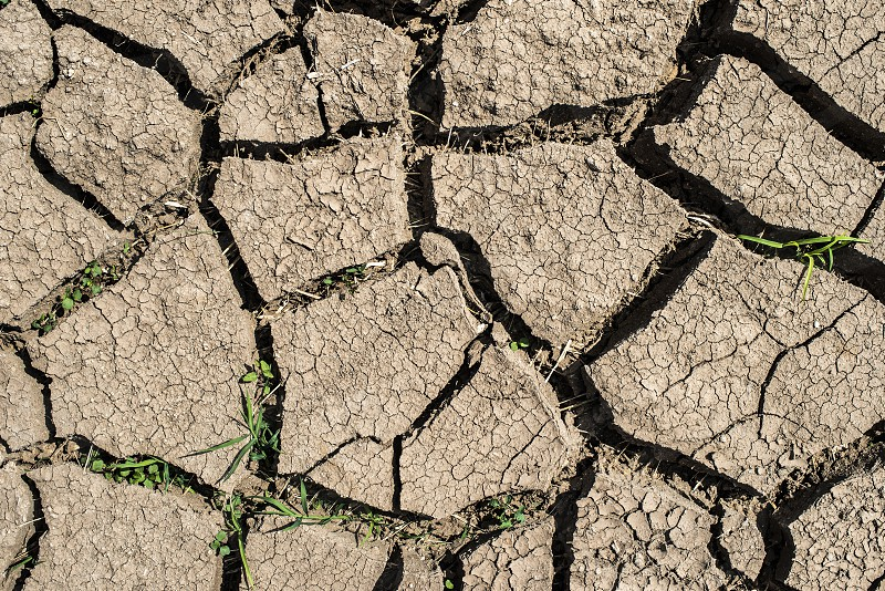 Cracked soil from drought photo