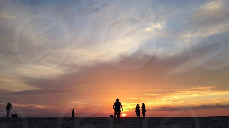 Sunrise greeters. Florida  photo