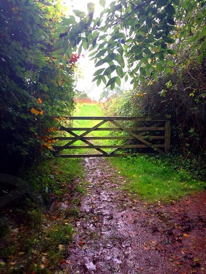 Country path ways walking rambling areas photo
