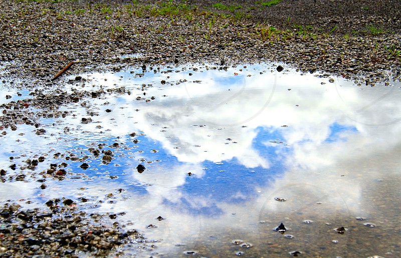 Reflection (29) : 'Upside Down'  photo
