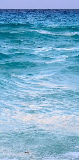 Cancun Ocean Waves photo
