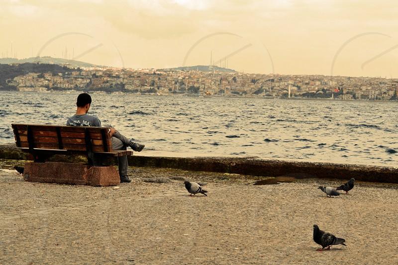Young man Sitting near Bosphorus Pigeons Turkey photo