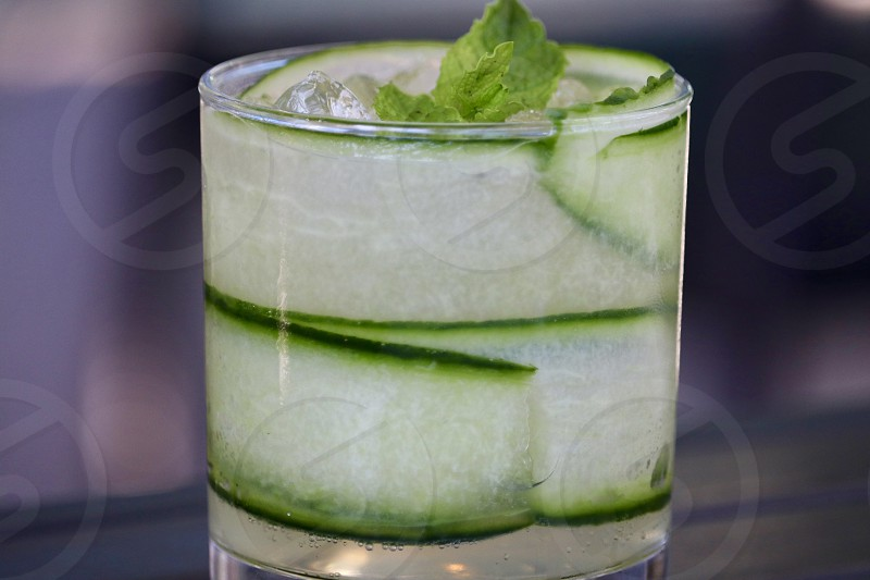 Drink beverage green cucumber refreshing summer alcohol glass closeup spritzer vodka gin tonic soda colour slices delicious quench thirst photo