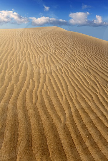 Desert sand dunes in Maspalomas Oasis Gran Canaria at Canary islands photo