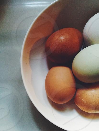 eggs in white bowl photo