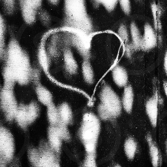 Shadow heart black&white Calgary yyc love  photo