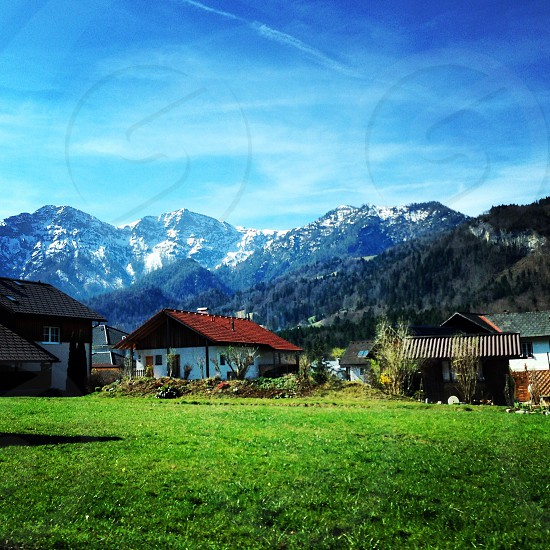 Austria Salzkammergut field photo