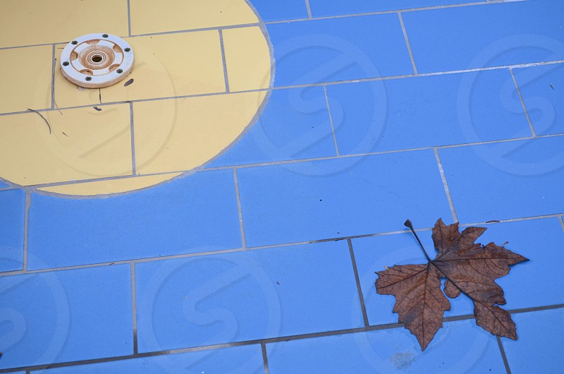 abandoned abstract autumn backdrop background bath blue brown close-up closeup color decorative detail drain drained dry empty floor hole leaf nobody off off-season pattern pool rectangle season spa space stone surface swimming tile wall wallpaper water yellow photo