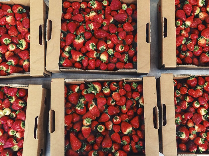 strawberries berries strawberry many background ripe red fruit food box boxes market farmers market photo