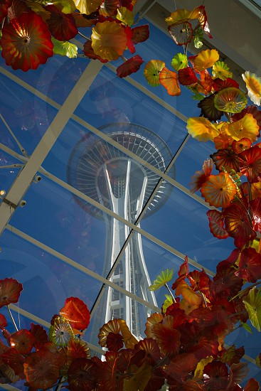 Seattle space needle chihuly  photo