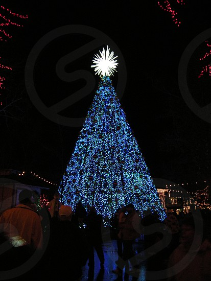 Large blue-lit Christmas tree with white star silhouetted crowd at Silver Dollar City Branson MO photo