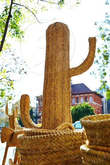 Valencia esparto handcraft baskets and cactus in Spain photo