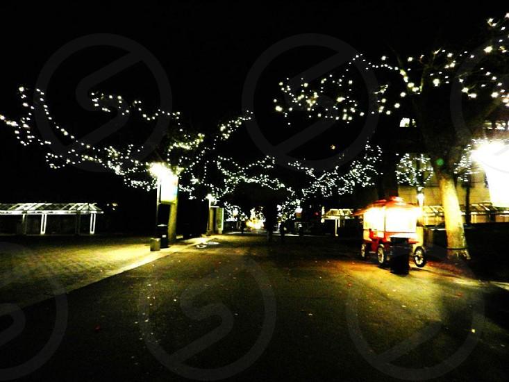 Christmas at Seattle Center in Washington photo