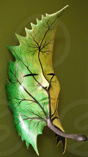 green leaf mask tree photo