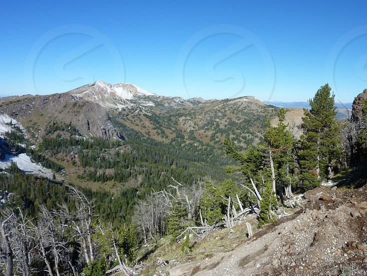 Sawtell Peak photo