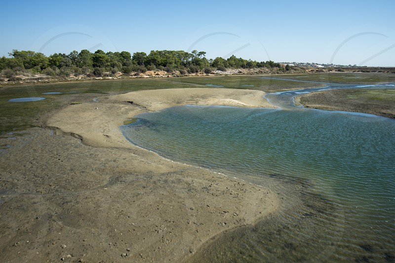 the natural Park of Quinta de marim of Ria Formosa near the Town of Olhao at the east Algarve in the south of Portugal in Europe. photo