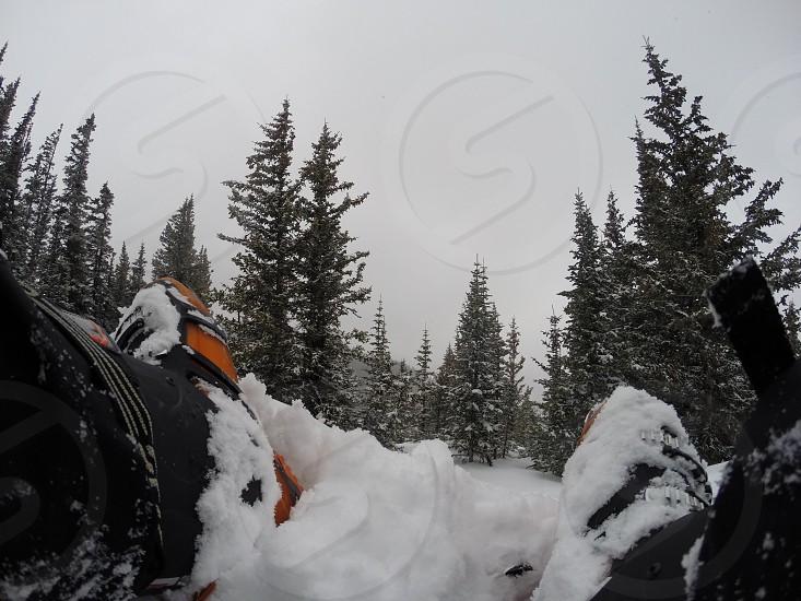 Skiing powder snow mountains photo