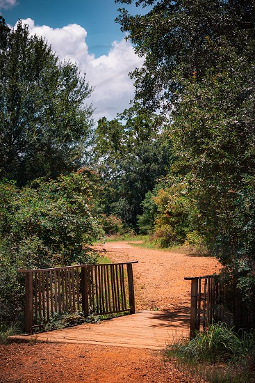 Nature Trail in Texas photo