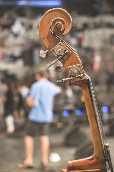 Contrabass on classical concert. Close up. Bulgaria photo