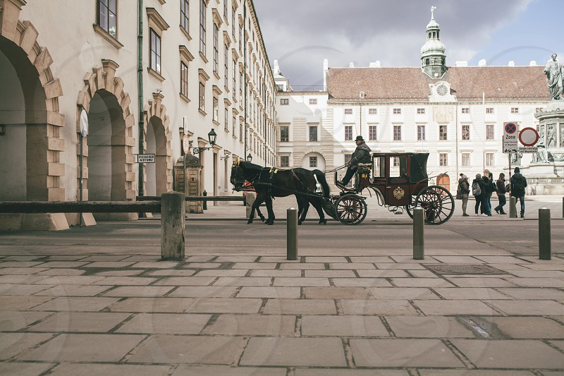 carriage with horses photo