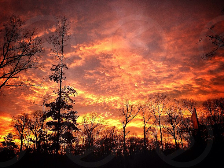 Beautiful sunset in Cabot AR photo