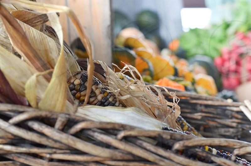 Thanks for good harvest. photo