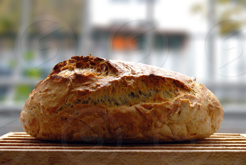 freshly baked bread photo