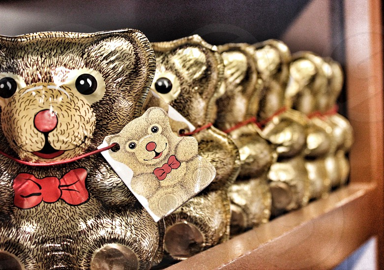 Chocolate Bears photo