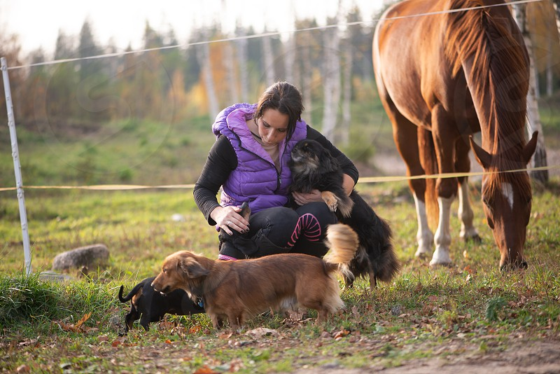 Woman and domestic animals photo