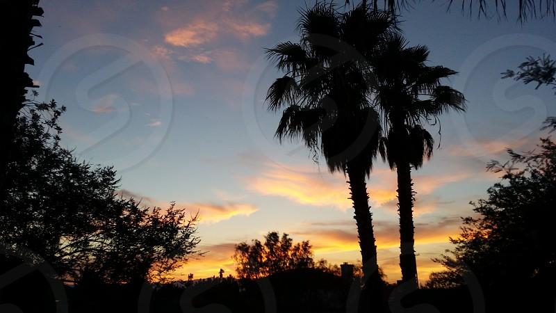 Sunset over paradise photo
