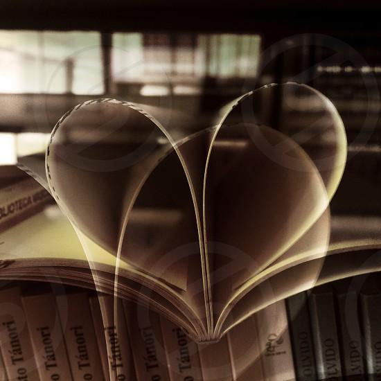 Hearts. Vasconcelos Library. Mexico City. photo