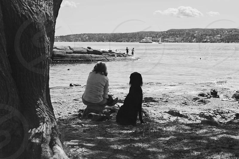Immagini della città di Oslo in Norvegia dei fiordi norvegesi e della penisola di Bigdoy quartiere residenziale di Oslo; images of the city of Oslo in Norway the norwegian fjords and the peninsula of Bigdoy residential district of Oslo photo