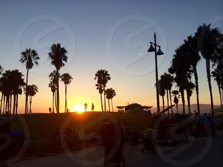 Venice Beachsunset photo