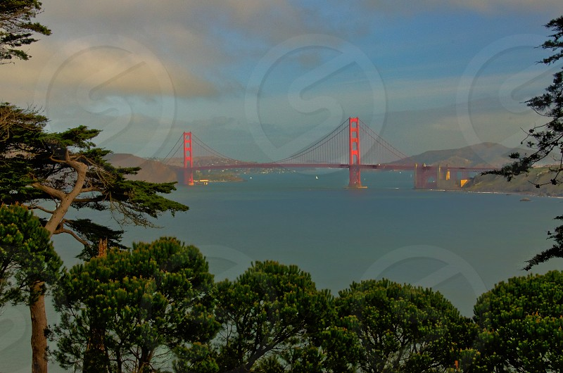 Golden Gate from Afar photo
