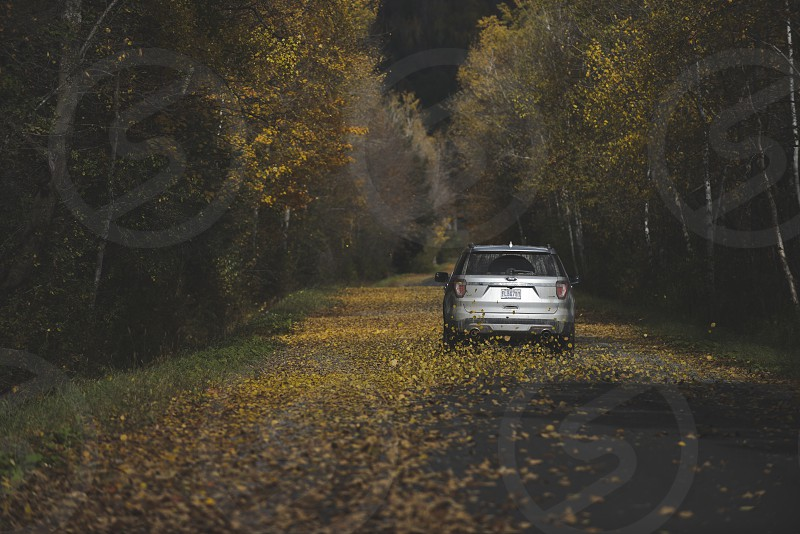 Fall in Canada with our Ford photo