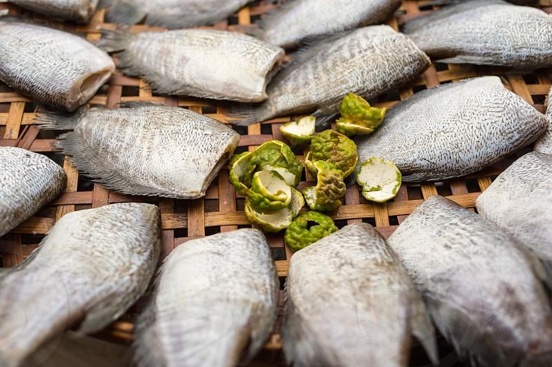 Street food - sundried fish in Bangkok Thailand photo