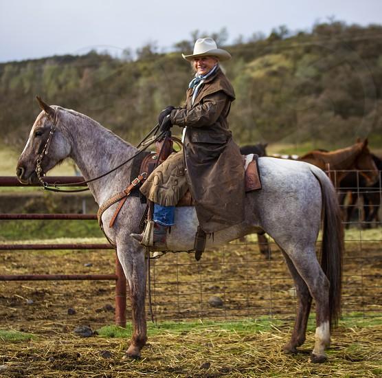Beautiful 80 year old cowgirl photo