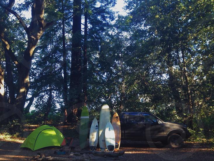 Surfing trip campsite under the redwoods photo