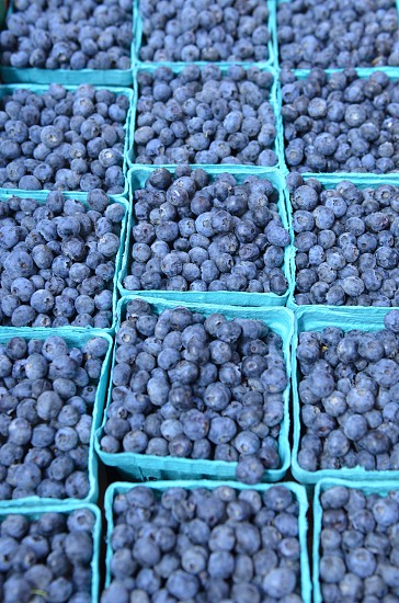 Pints of blueberries photo