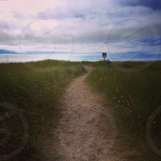 Pathway to serenity. photo