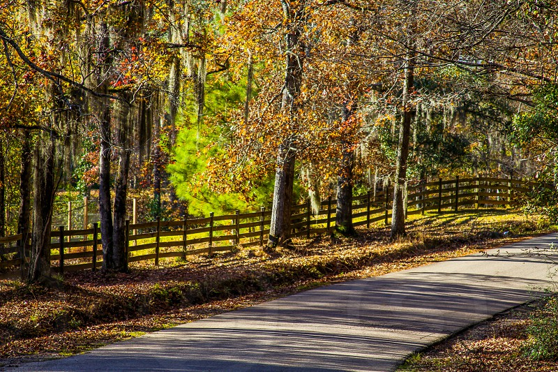 Autumn Road in the Country with a Fence photo